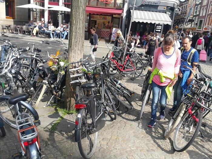 Bagheera Amsterdam