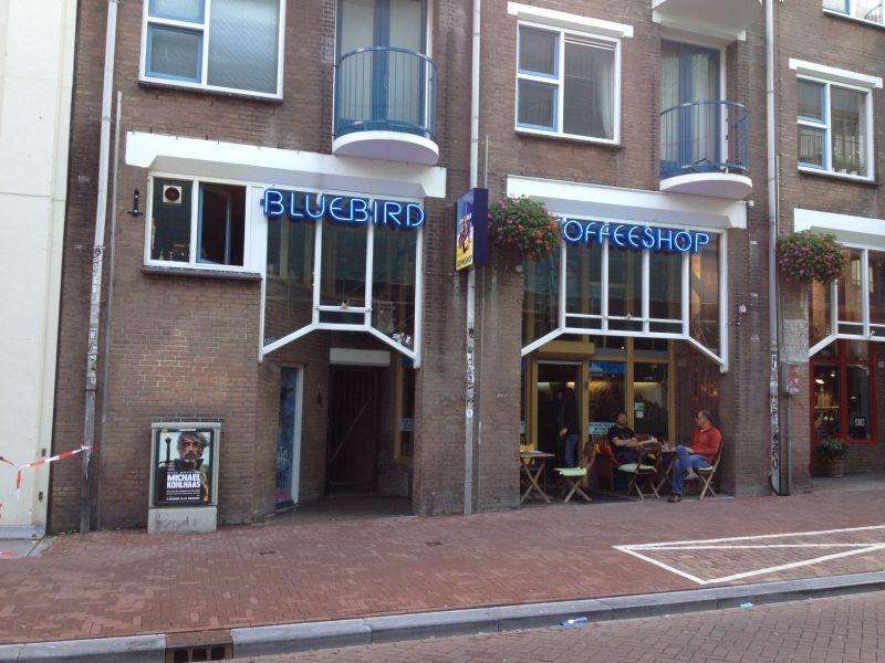 Bluebird Amsterdam