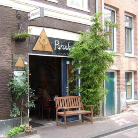 Paradox Amsterdam